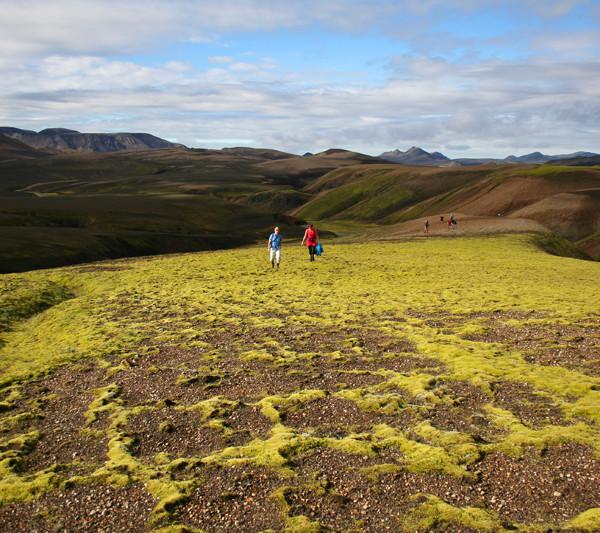 Geothermal paradise